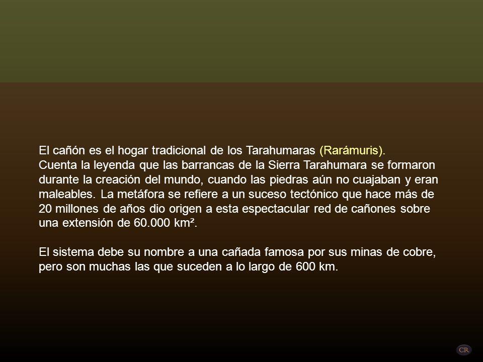 El cañón es el hogar tradicional de los Tarahumaras (Rarámuris).