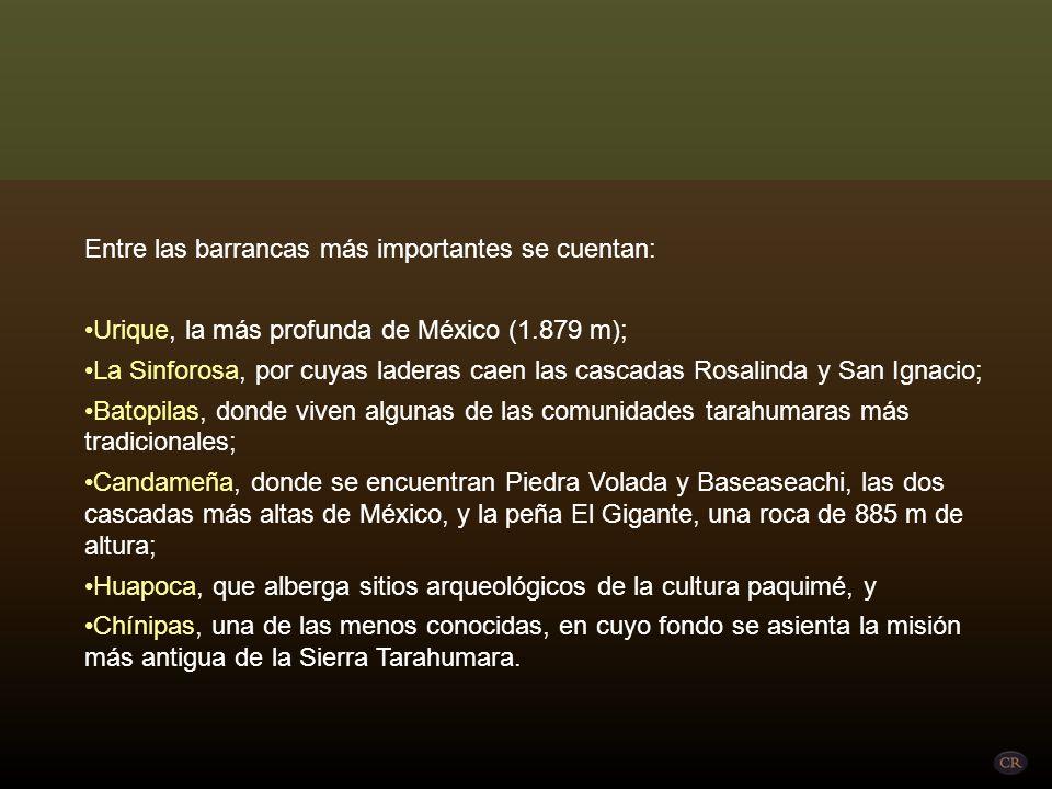 Entre las barrancas más importantes se cuentan: Urique, la más profunda de México (1.879 m); La Sinforosa, por cuyas laderas caen las cascadas Rosalinda y San Ignacio; Batopilas, donde viven algunas de las comunidades tarahumaras más tradicionales; Candameña, donde se encuentran Piedra Volada y Baseaseachi, las dos cascadas más altas de México, y la peña El Gigante, una roca de 885 m de altura; Huapoca, que alberga sitios arqueológicos de la cultura paquimé, y Chínipas, una de las menos conocidas, en cuyo fondo se asienta la misión más antigua de la Sierra Tarahumara.