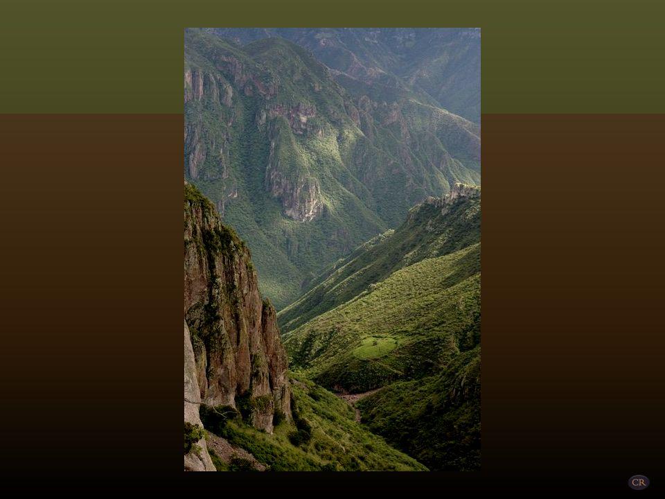 Entre las barrancas más importantes se cuentan: Urique, la más profunda de México (1.879 m); La Sinforosa, por cuyas laderas caen las cascadas Rosalin