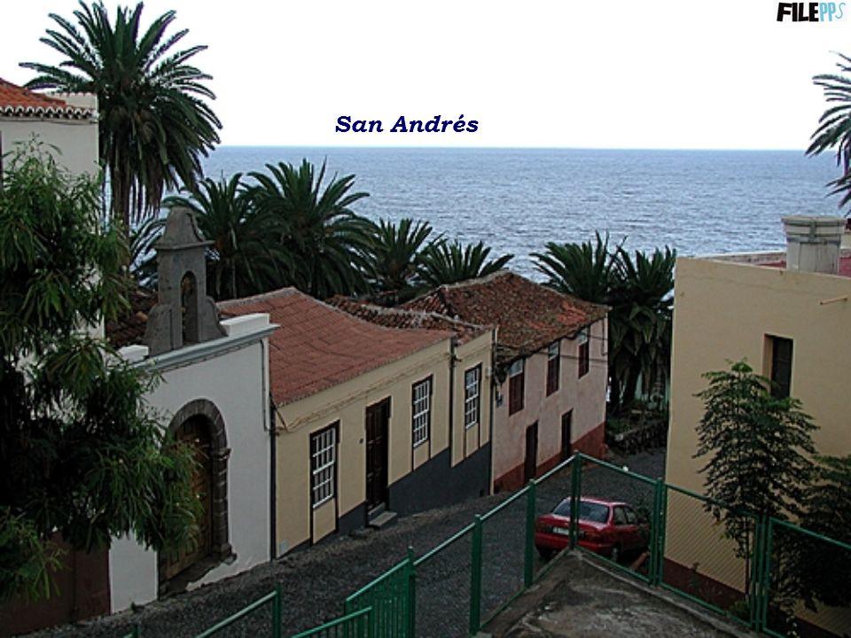 Playa de Fuencaliente