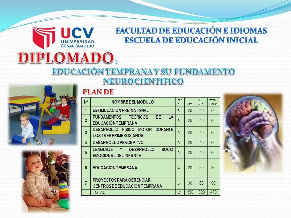 PLAN DE ESTUDIOS N°NOMBRE DEL MODULO CRE D H VIRTU H AUT TOTAL HORAS 1ESTIMULACIÓN PRE-NATANAL 3 204060 2 FUNDAMENTOS TEÓRICOS DE LA EDUCACIÓN TEMPRANA 3 204060 3 DESARROLLO FÍSICO MOTOR DURANTE LOS TRES PRIMEROS AÑOS.