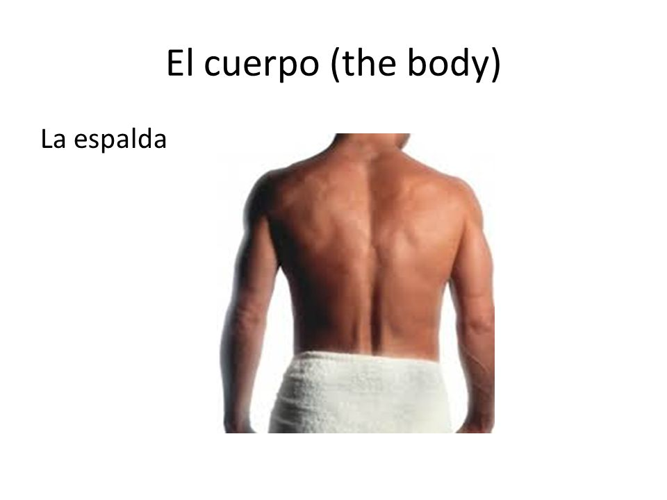 El cuerpo (the body) Choose the right answer What part of the body is this? garganta espalda dedo