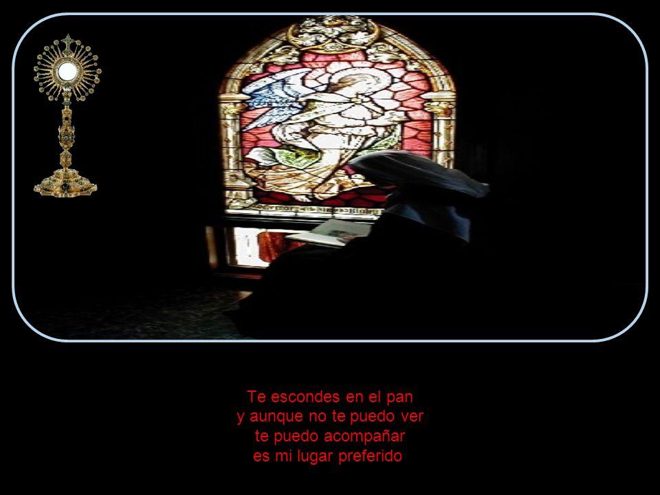 Y ahora cada vez que el sacerdote eleva el Pan en el altar me pongo de rodillas porque sé que en esa Hostia Tú estás.