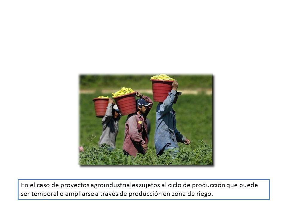 En el caso de proyectos agroindustriales sujetos al ciclo de producción que puede ser temporal o ampliarse a través de producción en zona de riego.