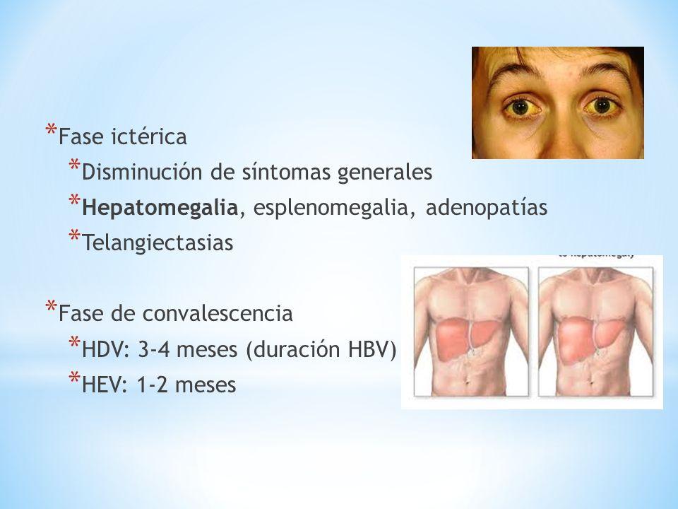 * Fase ictérica * Disminución de síntomas generales * Hepatomegalia, esplenomegalia, adenopatías * Telangiectasias * Fase de convalescencia * HDV: 3-4