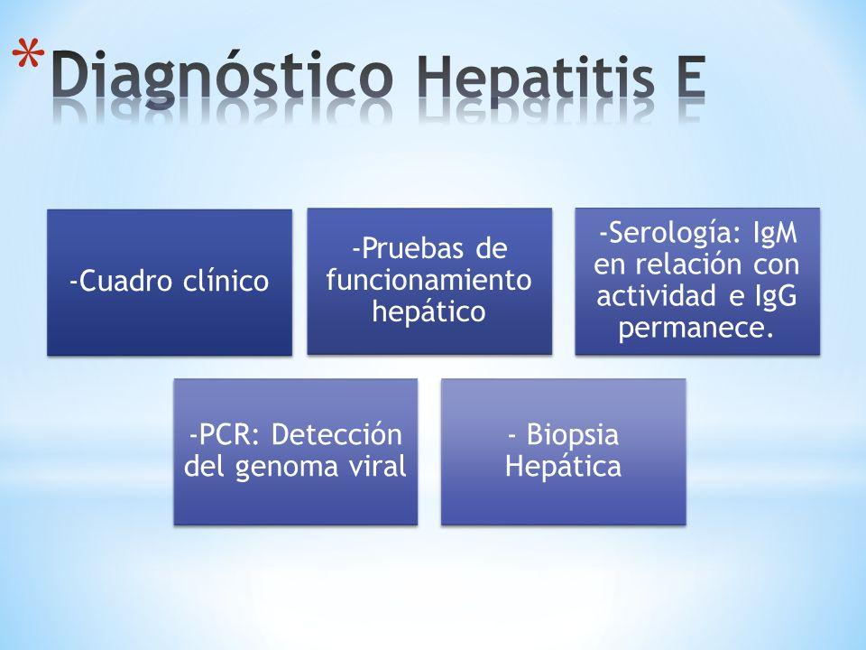 -Cuadro clínico -Pruebas de funcionamiento hepático -Serología: IgM en relación con actividad e IgG permanece. -PCR: Detección del genoma viral - Biop