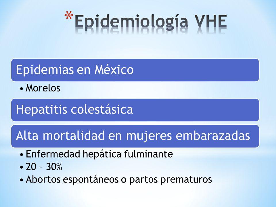 Epidemias en México Morelos Hepatitis colestásicaAlta mortalidad en mujeres embarazadas Enfermedad hepática fulminante 20 – 30% Abortos espontáneos o