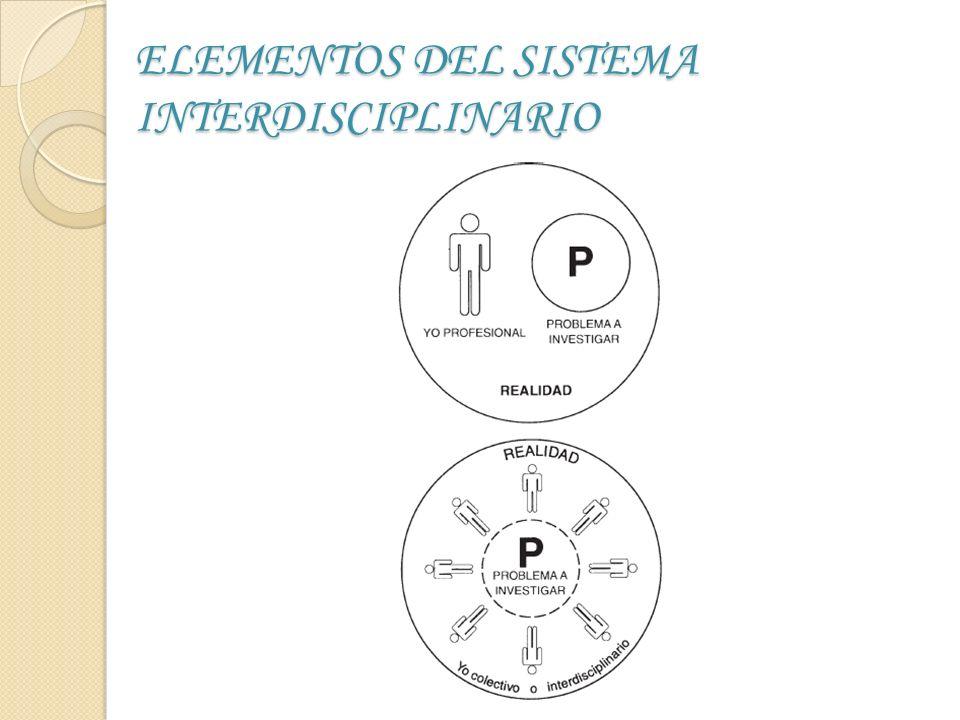 ELEMENTOS DEL SISTEMA INTERDISCIPLINARIO
