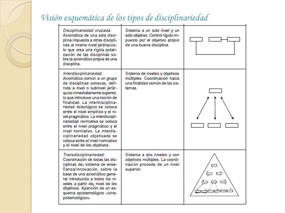 NIVELES DE INTERDISCIPLINARIEDAD El primer nivel de explicación y de conocimiento se da a la altura de los fenómenos singulares y dentro de este nivel, el de los fenómenos más simples.