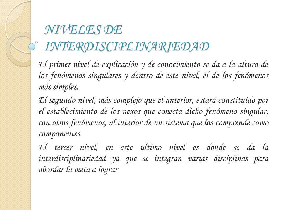Visto desde otras perspectivas podría representarse la interdisciplinariedad de la siguiente forma: