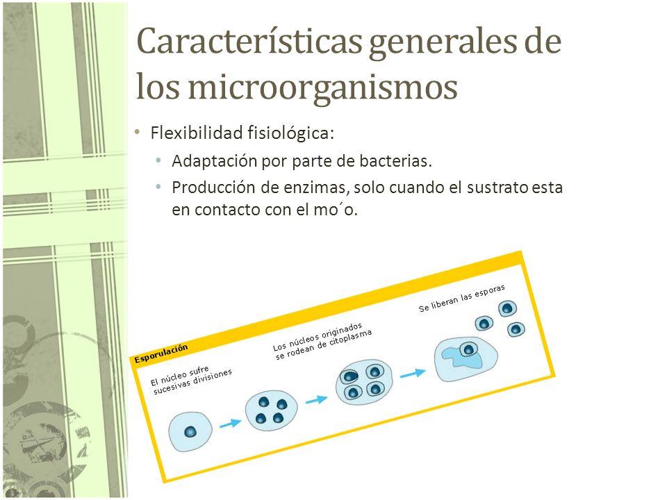 Características generales de los microorganismos Flexibilidad fisiológica: Adaptación por parte de bacterias. Producción de enzimas, solo cuando el su