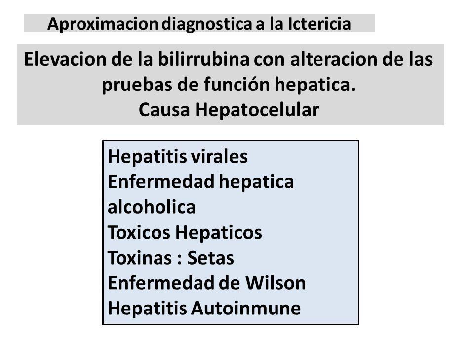 Aproximacion diagnostica a la Ictericia Elevacion de la bilirrubina con alteracion de las pruebas de función hepatica. Causa Hepatocelular Hepatitis v