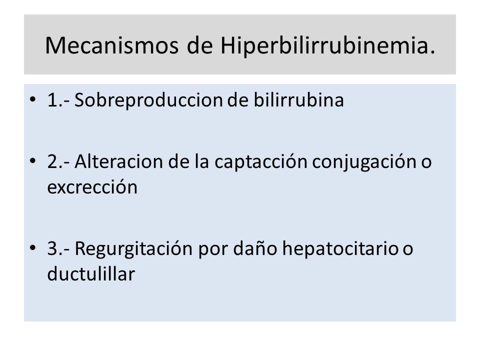 Mecanismos de Hiperbilirrubinemia. 1.- Sobreproduccion de bilirrubina 2.- Alteracion de la captacción conjugación o excrección 3.- Regurgitación por d