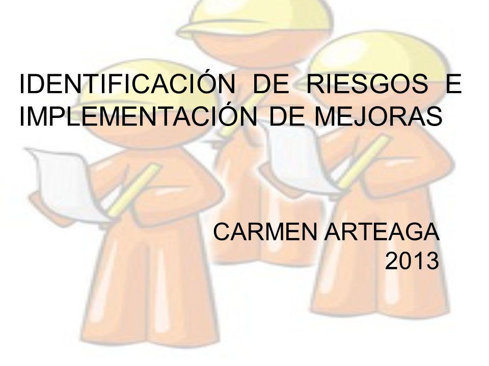 IDENTIFICACIÓN DE RIESGOS E IMPLEMENTACIÓN DE MEJORAS CARMEN ARTEAGA 2013