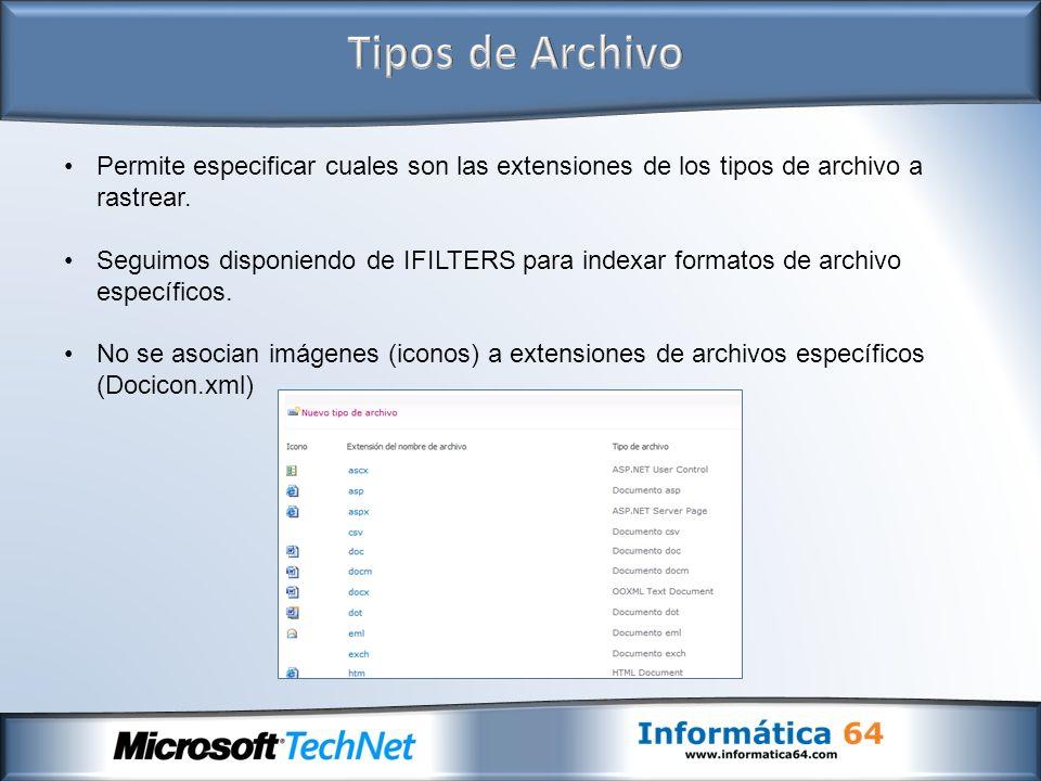 Permite especificar cuales son las extensiones de los tipos de archivo a rastrear.