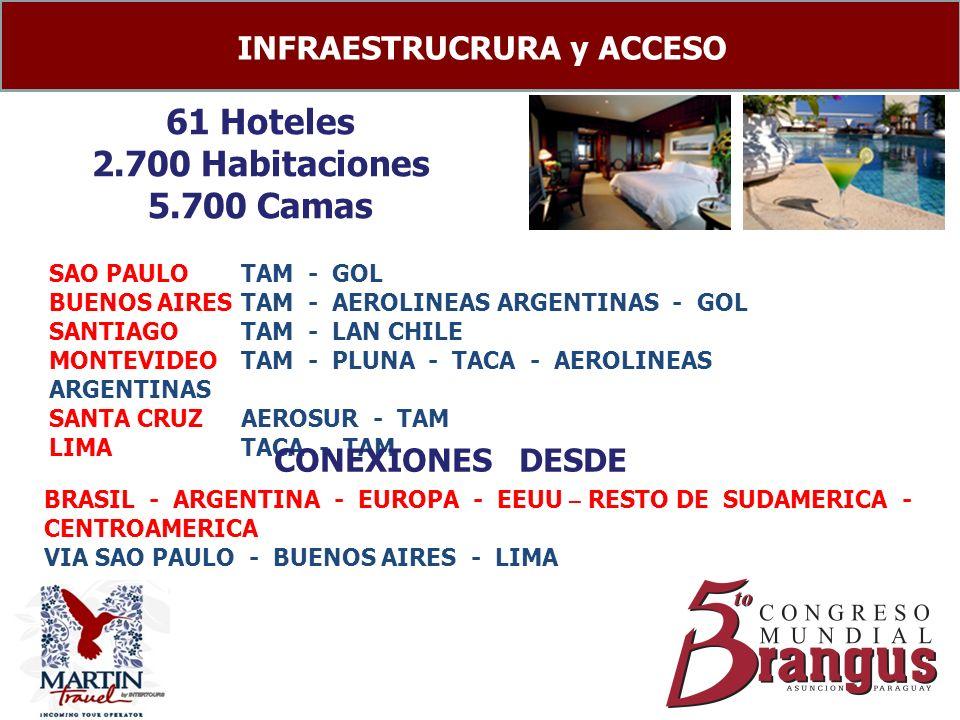 61 Hoteles 2.700 Habitaciones 5.700 Camas INFRAESTRUCRURA y ACCESO SAO PAULOTAM - GOL BUENOS AIRESTAM - AEROLINEAS ARGENTINAS - GOL SANTIAGO TAM - LAN CHILE MONTEVIDEOTAM - PLUNA - TACA - AEROLINEAS ARGENTINAS SANTA CRUZAEROSUR - TAM LIMATACA - TAM CONEXIONES DESDE BRASIL - ARGENTINA - EUROPA - EEUU – RESTO DE SUDAMERICA - CENTROAMERICA VIA SAO PAULO - BUENOS AIRES - LIMA
