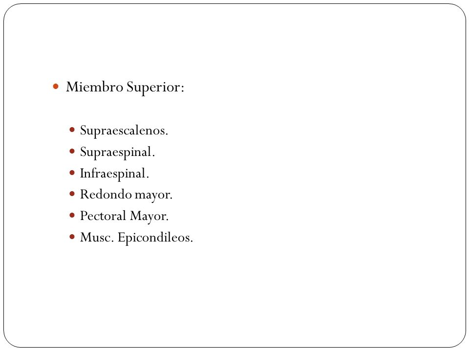 Miembro Superior: Supraescalenos. Supraespinal. Infraespinal. Redondo mayor. Pectoral Mayor. Musc. Epicondileos.