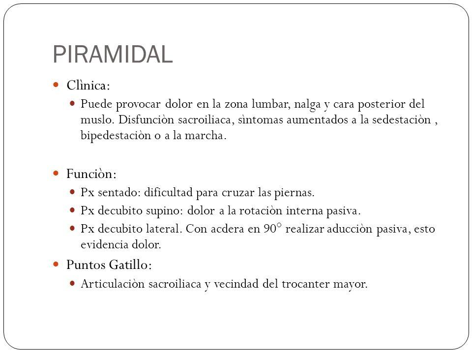 PIRAMIDAL Clìnica: Puede provocar dolor en la zona lumbar, nalga y cara posterior del muslo. Disfunciòn sacroiliaca, sìntomas aumentados a la sedestac