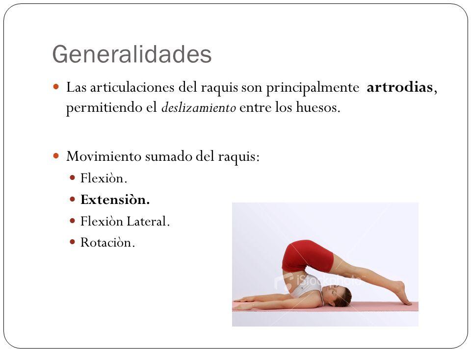 Generalidades Las articulaciones del raquis son principalmente artrodias, permitiendo el deslizamiento entre los huesos. Movimiento sumado del raquis: