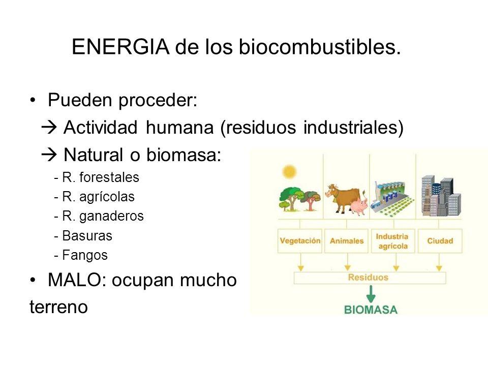 ENERGÍA eólica BUENO: Aprovecha la fuerza del viento para generar electricidad.