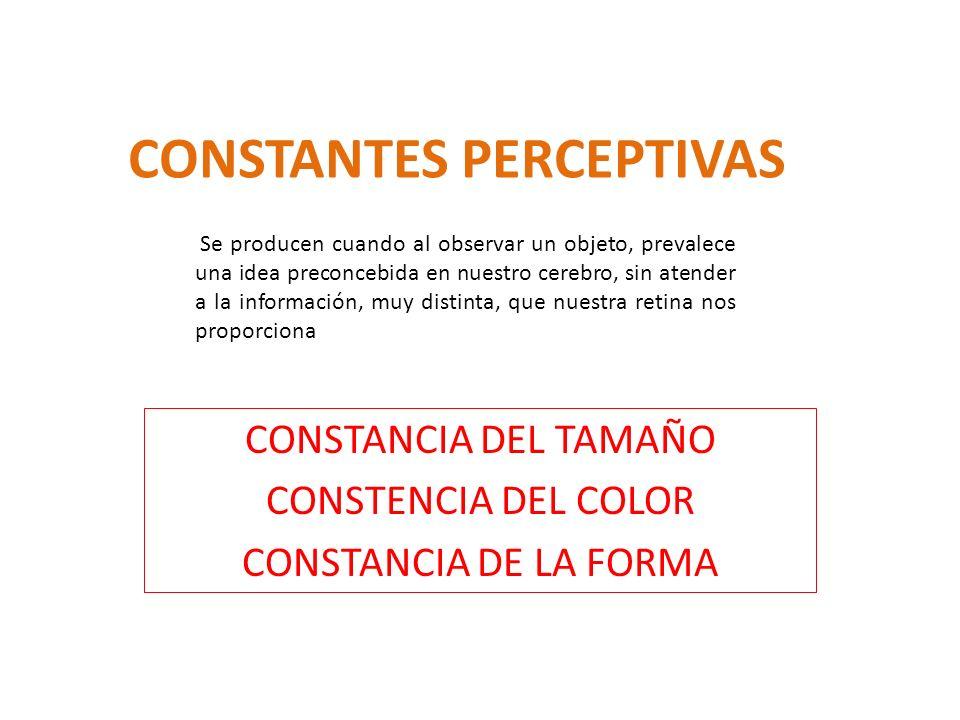 CONSTANTES PERCEPTIVAS CONSTANCIA DEL TAMAÑO CONSTENCIA DEL COLOR CONSTANCIA DE LA FORMA Se producen cuando al observar un objeto, prevalece una idea
