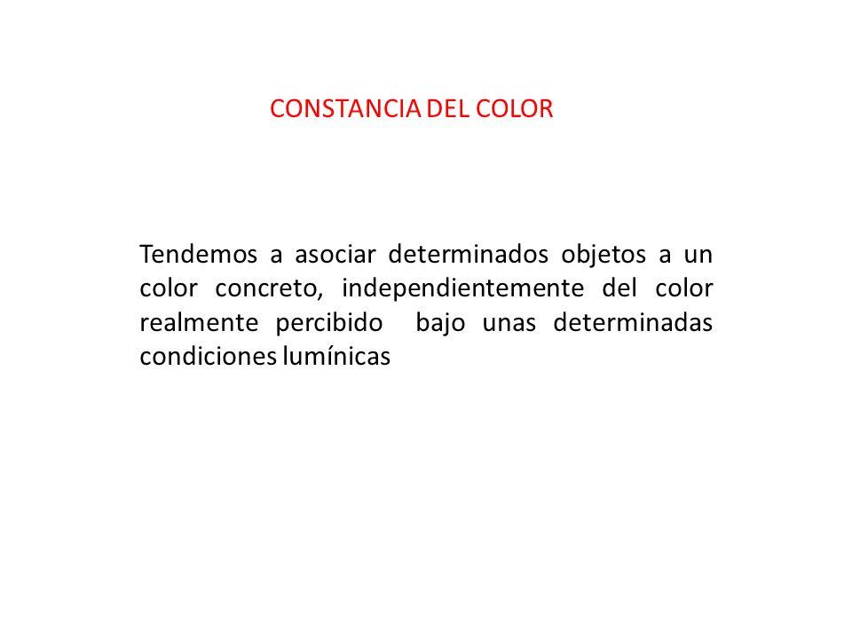 CONSTANCIA DEL COLOR Tendemos a asociar determinados objetos a un color concreto, independientemente del color realmente percibido bajo unas determina
