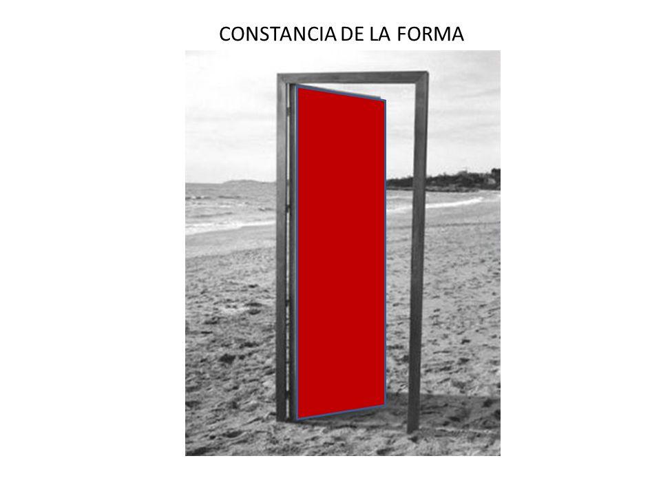 CONSTANCIA DE LA FORMA