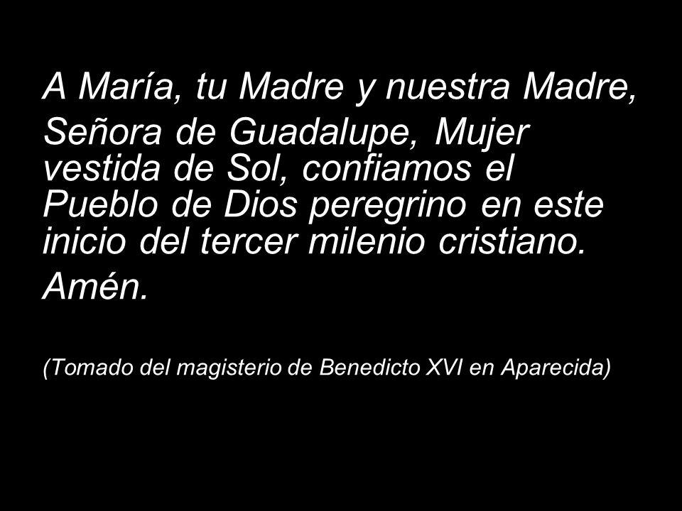 A María, tu Madre y nuestra Madre, Señora de Guadalupe, Mujer vestida de Sol, confiamos el Pueblo de Dios peregrino en este inicio del tercer milenio