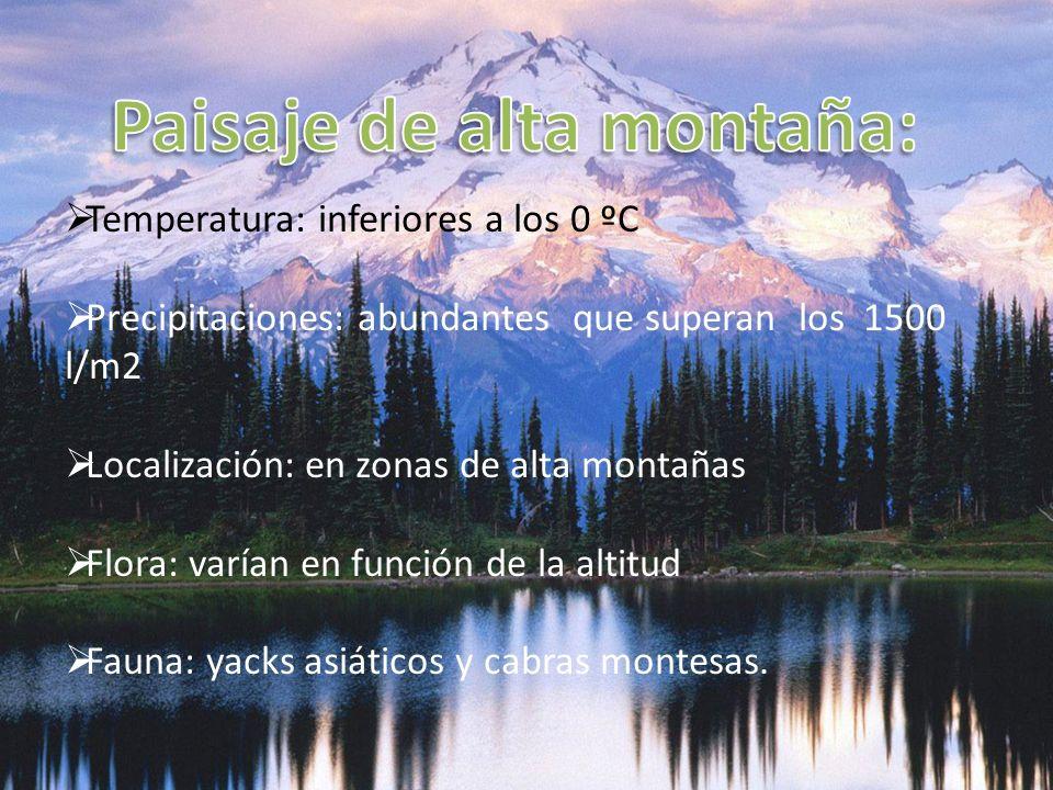 Temperatura: inferiores a los 0 ºC Precipitaciones: abundantes que superan los 1500 l/m2 Localización: en zonas de alta montañas Flora: varían en func