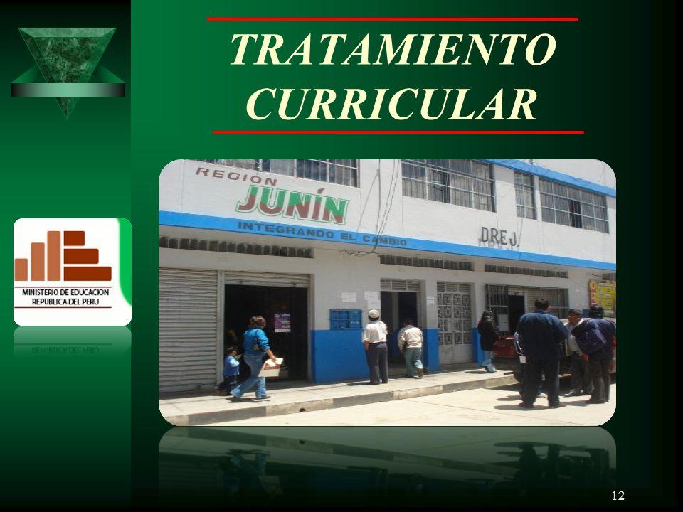TRATAMIENTO CURRICULAR 12