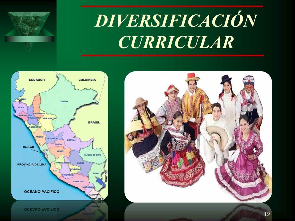 DIVERSIFICACIÓN CURRICULAR 19