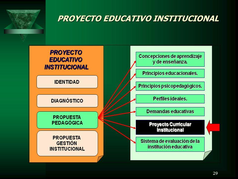 29 PROYECTO EDUCATIVO INSTITUCIONAL