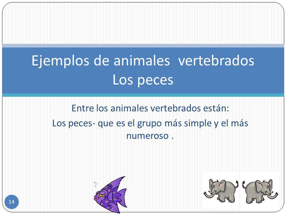 Son los animales que tienen un esqueleto interno cuya parte fundamental es la columna vertebral y en otros casos el esqueleto esta compuesto por escam