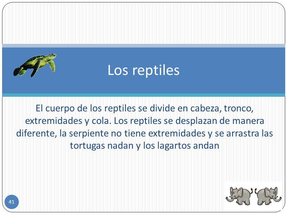 Son vertebrados terrestres, con el cuerpo generalmente cubierto de escamas. Se producen por huevos, que generalmente no incuban, ya que tienen fecunda