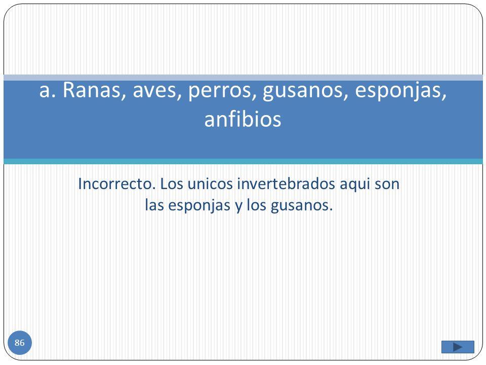 Los animales invertebrados se clasifican en: a)Ranas, aves, perros, gusanos, esponjas, anfibios b) Las esponjas, los equinodermos, las medusas, anemon