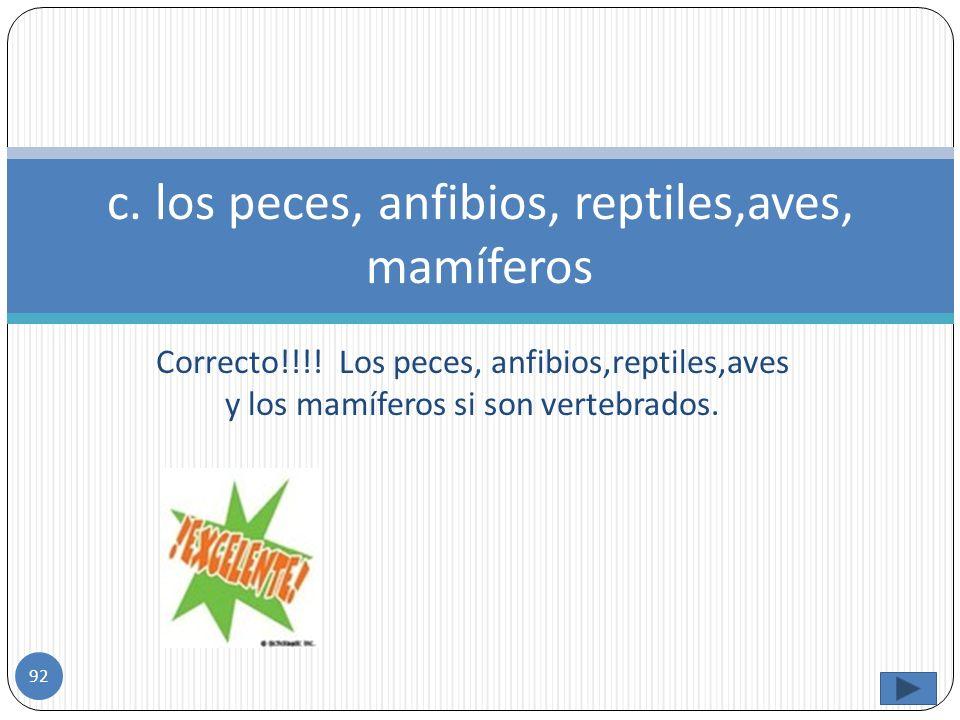 Incorrecto. Los gusanos y los moluscos no son vertebrados, los anfibios, reptiles y ranas si son vertebrados. b. Gusanos, anfibios, moluscos, reptiles