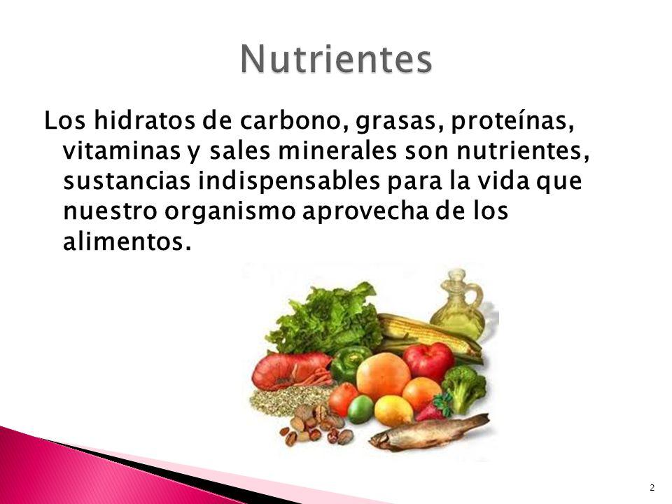 Los hidratos de carbono, grasas, proteínas, vitaminas y sales minerales son nutrientes, sustancias indispensables para la vida que nuestro organismo a