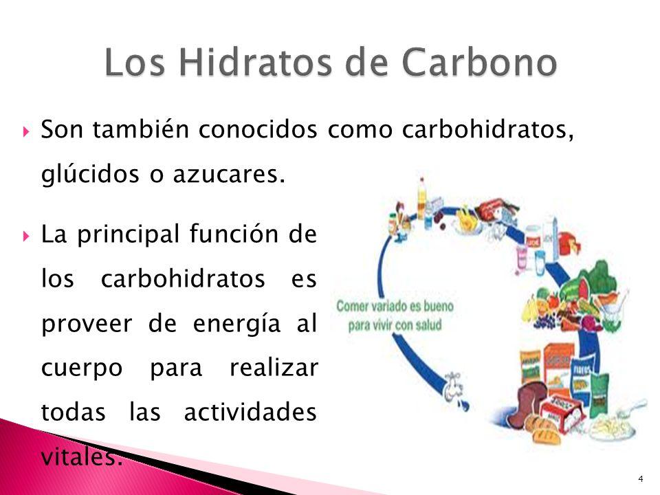 Son también conocidos como carbohidratos, glúcidos o azucares. 4 La principal función de los carbohidratos es proveer de energía al cuerpo para realiz
