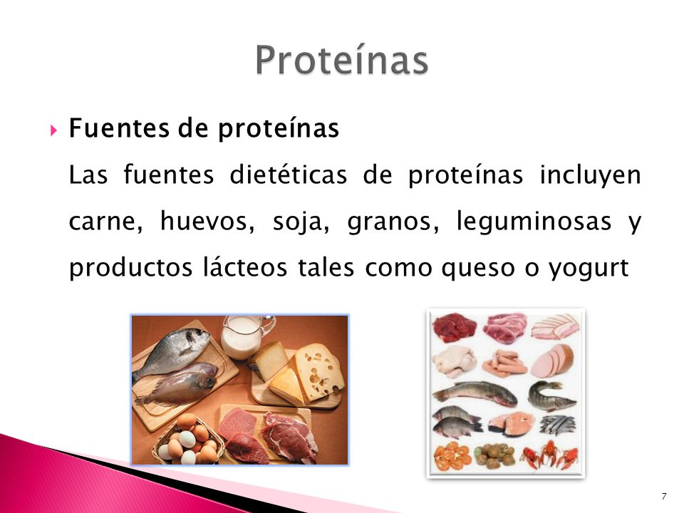 Fuentes de proteínas Las fuentes dietéticas de proteínas incluyen carne, huevos, soja, granos, leguminosas y productos lácteos tales como queso o yogu