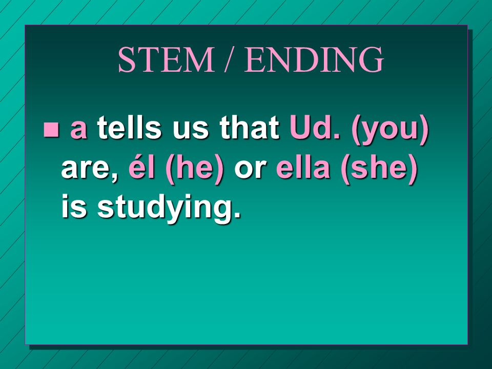 STEM / ENDING n o tells us that yo (I) am studying. n as tells us that tú (you) are studying.