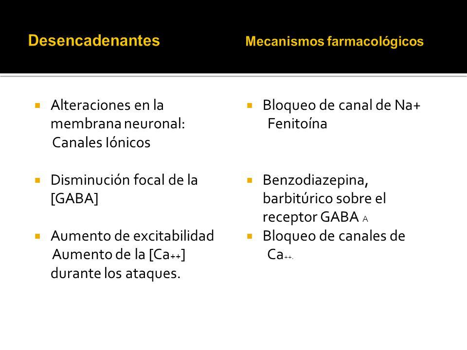 Alteraciones en la membrana neuronal: Canales Iónicos Disminución focal de la [GABA] Aumento de excitabilidad Aumento de la [Ca ++ ] durante los ataques.
