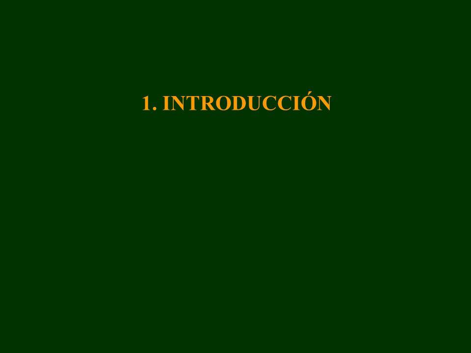 6. PERSPECTIVAS FUTURAS DE LA INVESTIGACIÓN