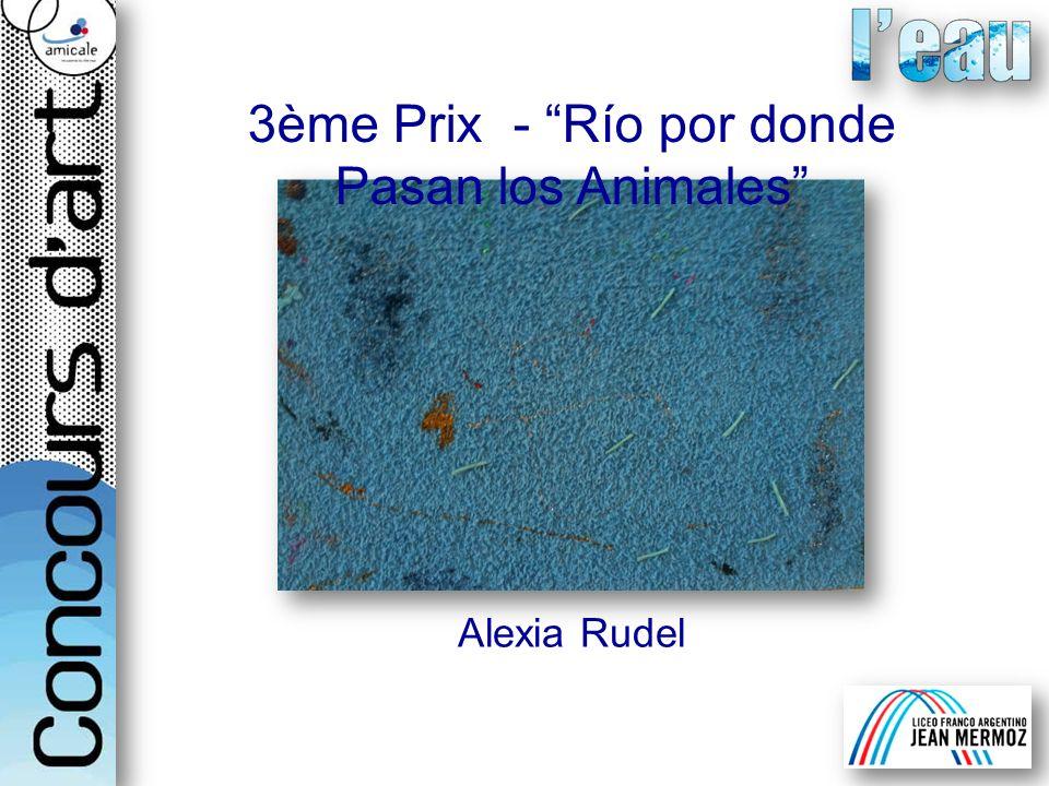 Alexia Rudel 3ème Prix - Río por donde Pasan los Animales