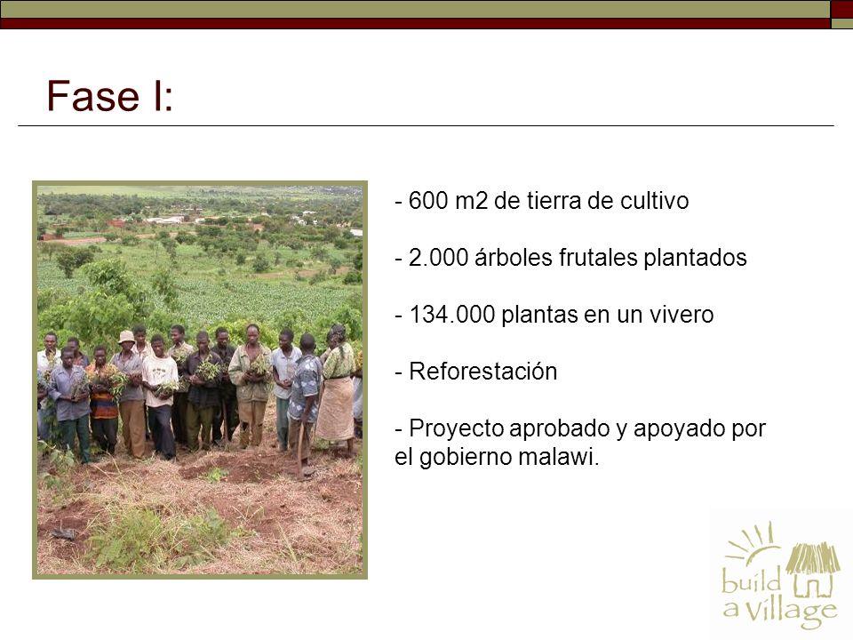 - 600 m2 de tierra de cultivo - 2.000 árboles frutales plantados - 134.000 plantas en un vivero - Reforestación - Proyecto aprobado y apoyado por el gobierno malawi.