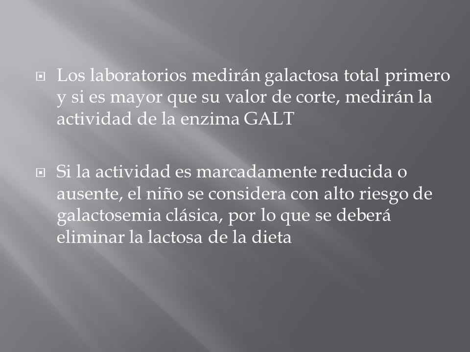 Los laboratorios medirán galactosa total primero y si es mayor que su valor de corte, medirán la actividad de la enzima GALT Si la actividad es marcadamente reducida o ausente, el niño se considera con alto riesgo de galactosemia clásica, por lo que se deberá eliminar la lactosa de la dieta