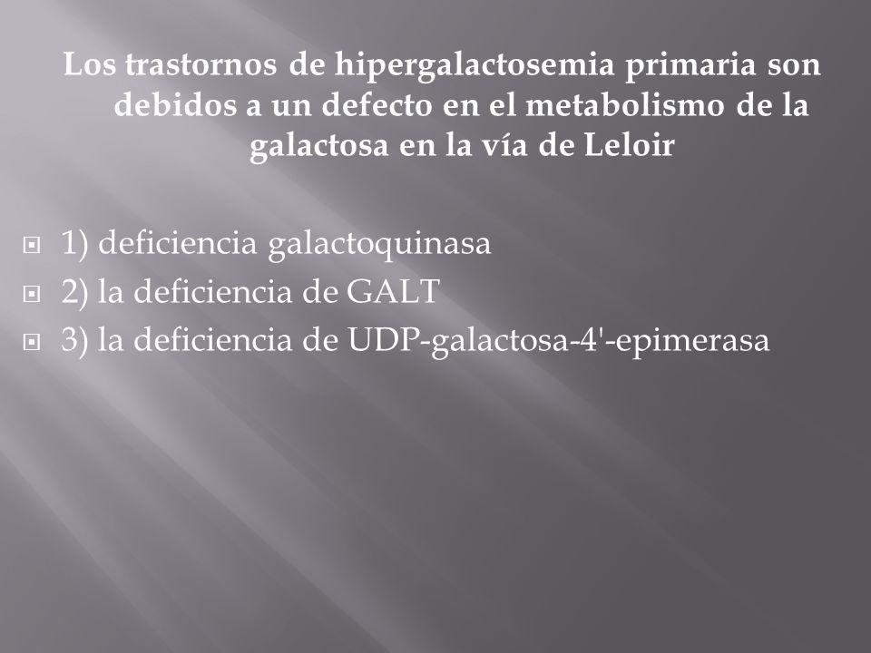Los trastornos de hipergalactosemia primaria son debidos a un defecto en el metabolismo de la galactosa en la vía de Leloir 1) deficiencia galactoquinasa 2) la deficiencia de GALT 3) la deficiencia de UDP-galactosa-4 -epimerasa