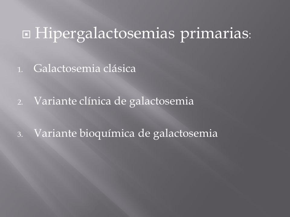 Hipergalactosemias primarias : 1.Galactosemia clásica 2.