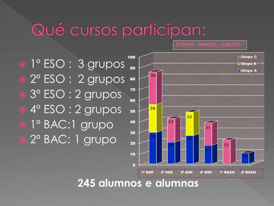 1º ESO : 3 grupos 2º ESO : 2 grupos 3º ESO : 2 grupos 4º ESO : 2 grupos 1º BAC:1 grupo 2º BAC: 1 grupo 245 alumnos e alumnas