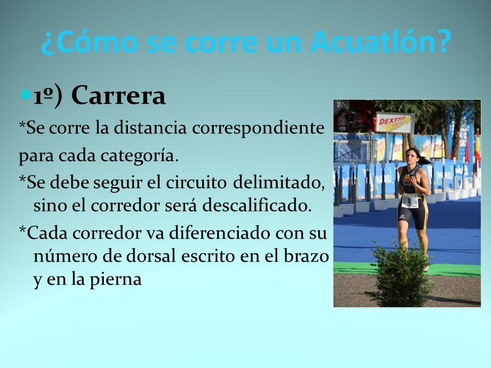 2º) Transición de la carrera a la natación *Son los pasos a seguir para pasar de la carrera a la natación.
