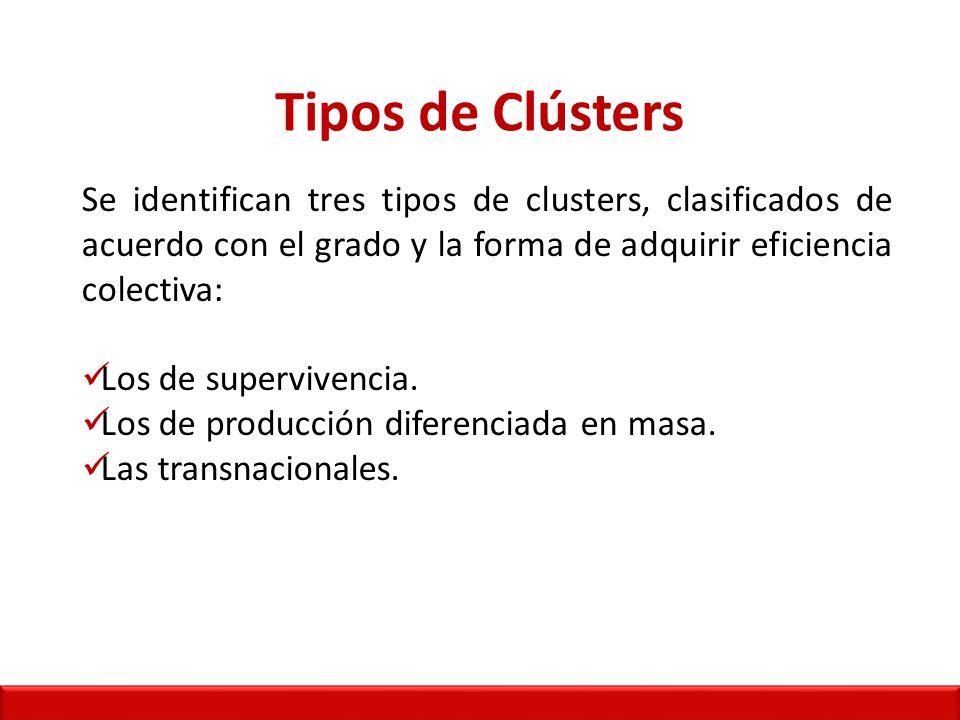 Tipos de Clústers Se identifican tres tipos de clusters, clasificados de acuerdo con el grado y la forma de adquirir eficiencia colectiva: Los de supervivencia.